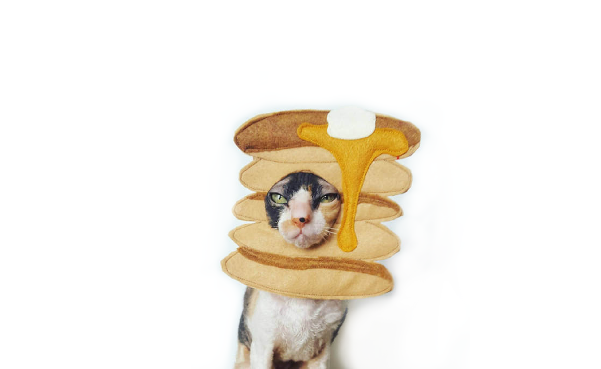 Pancakes Dog or Cat Costume at Etsy