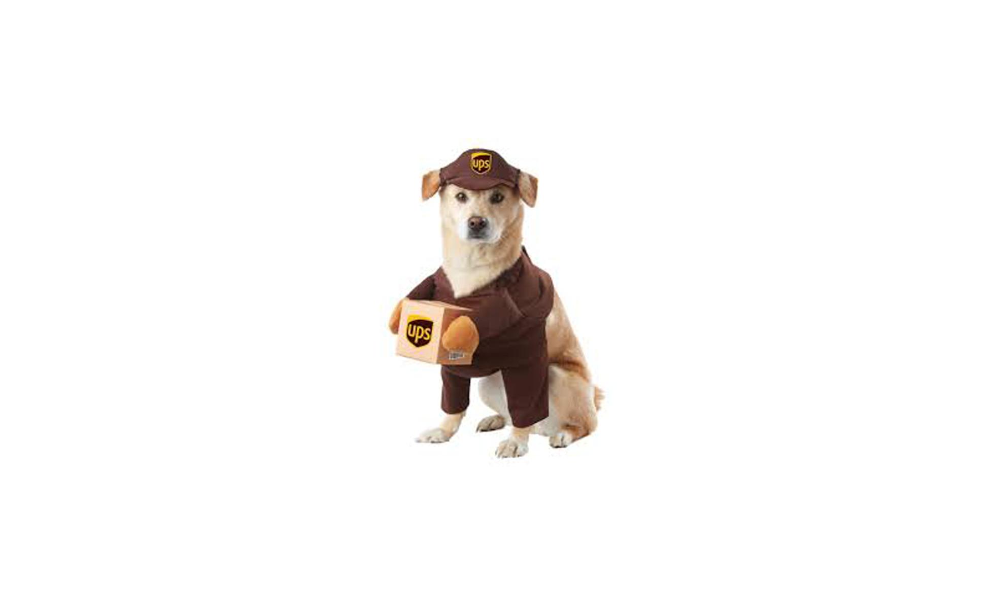 UPS Dog Costume on Amazon