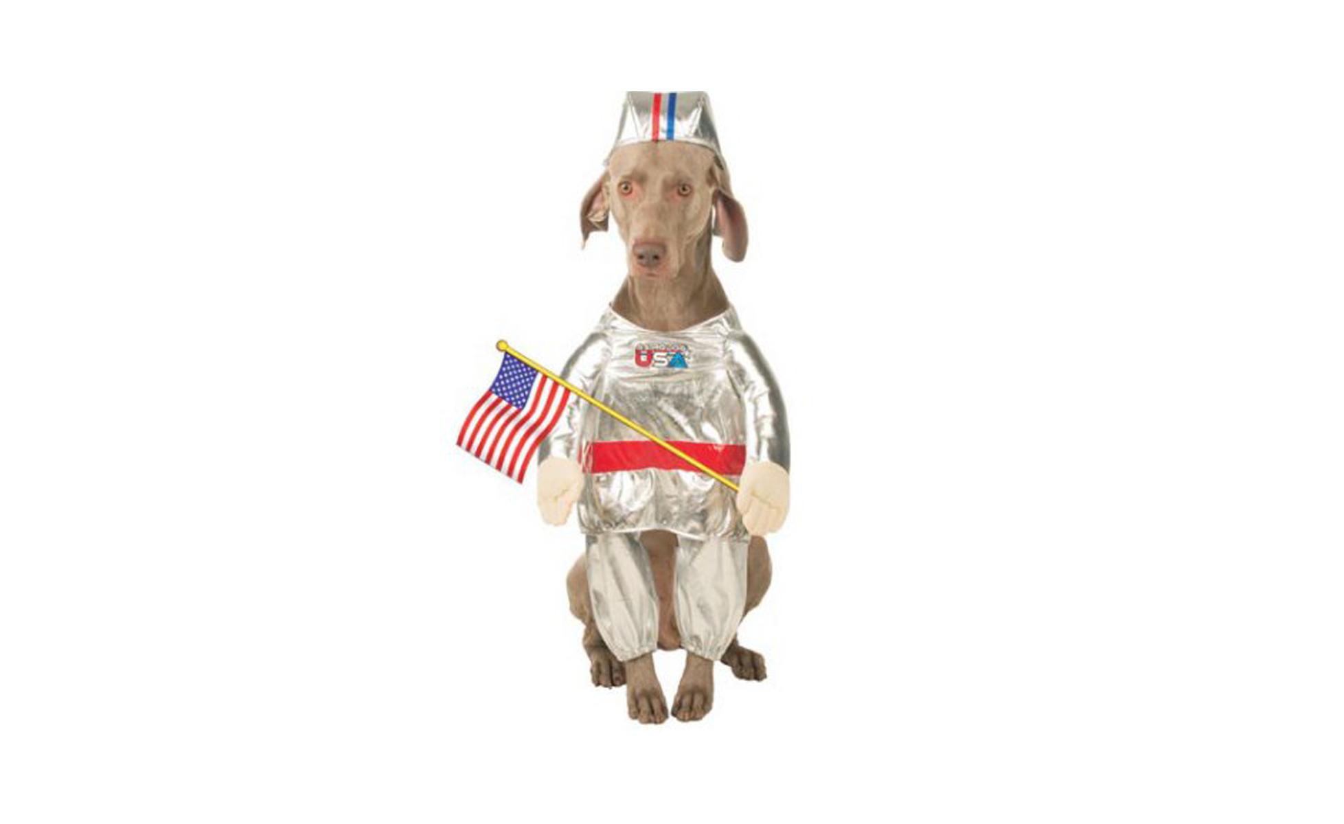 Astronaut Dog Costume at Jet.com