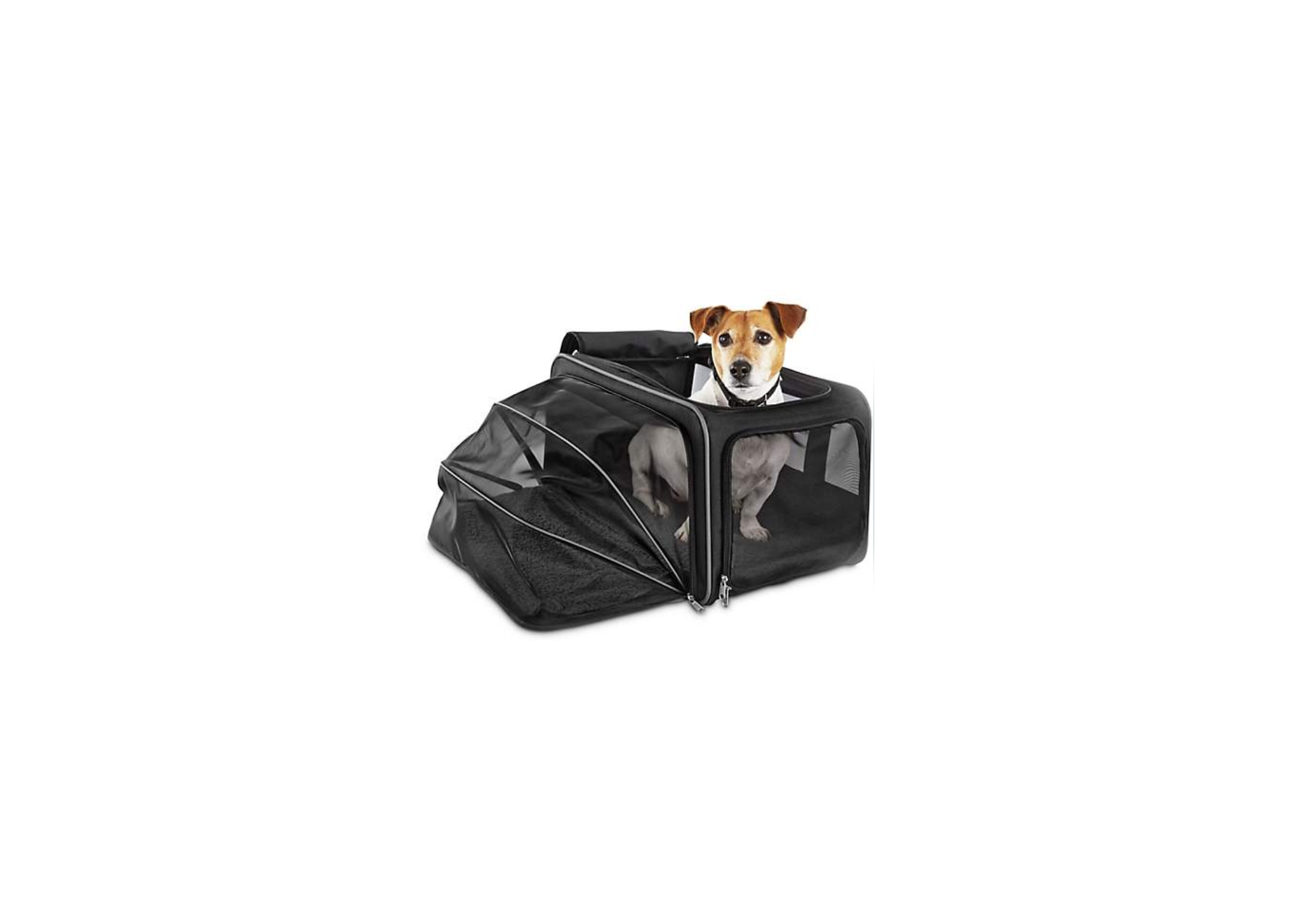 Dog Carrier Expandable