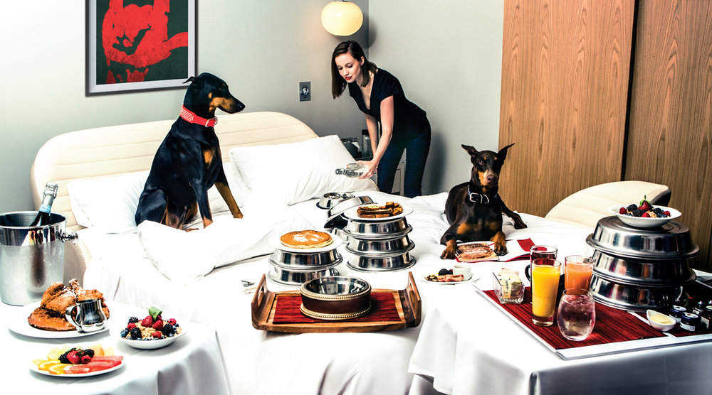 Hotel bed with dogs and room service food on top at Virgin Hotels in Chicago