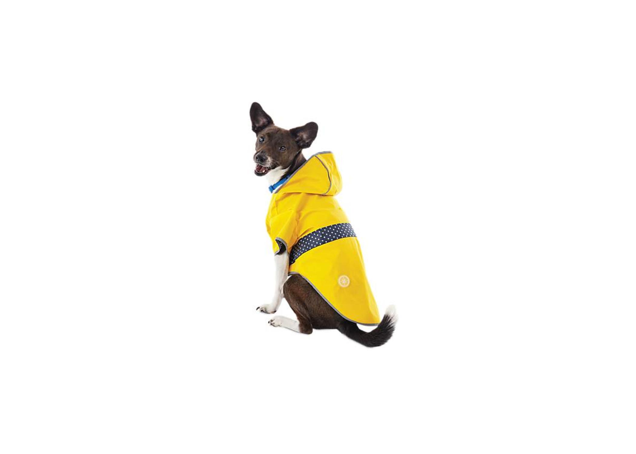 Good2Go Reversible Raincoat