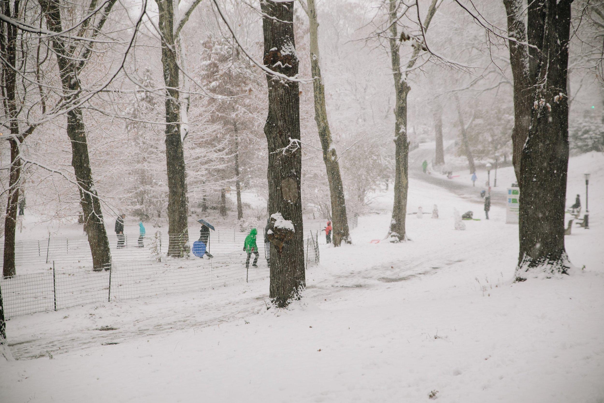 Kids sledding in Riverside Park