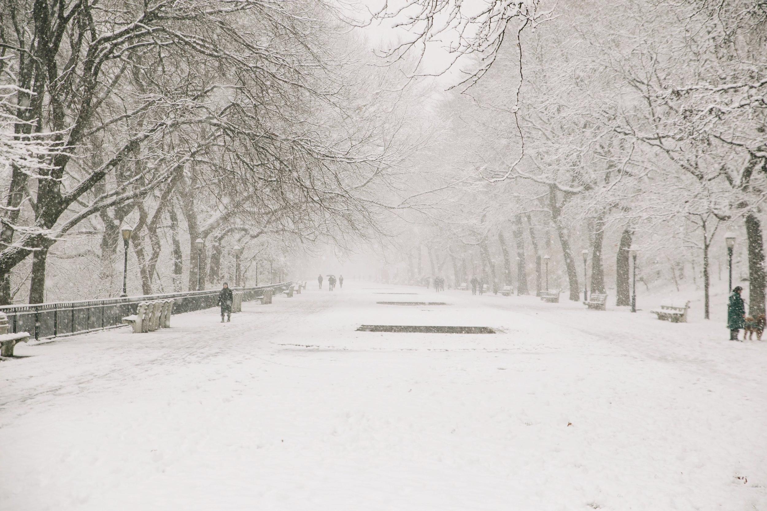 Riverside Park in the snow