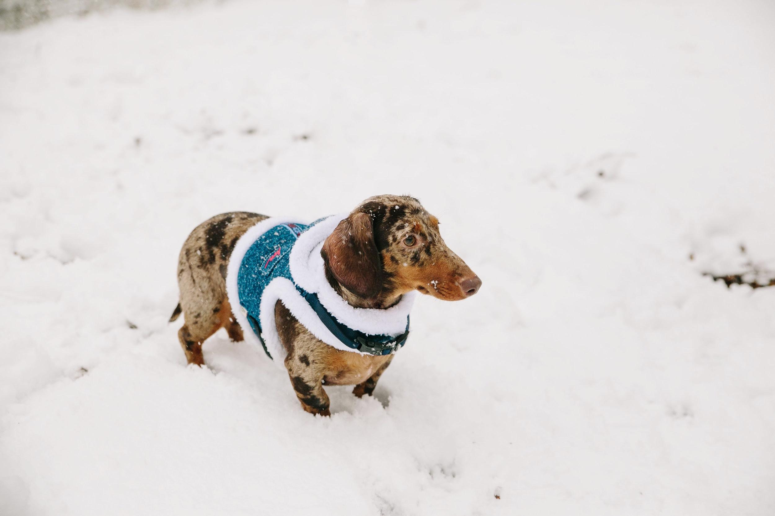 Dave in the snow in Riverside Park
