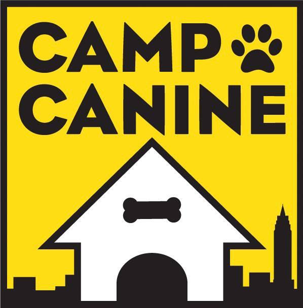 Image courtesy of Camp Canine