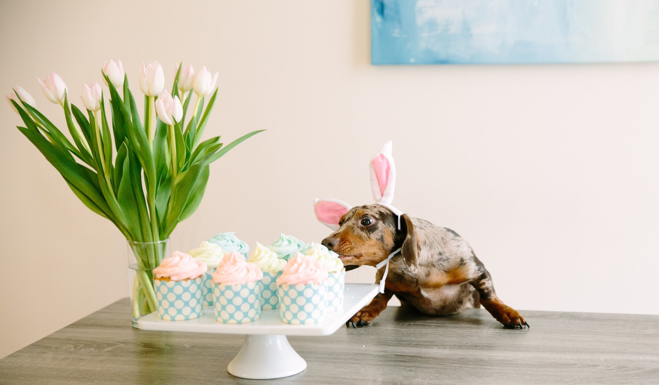 Here comes the Easter Weenie! 🐰
