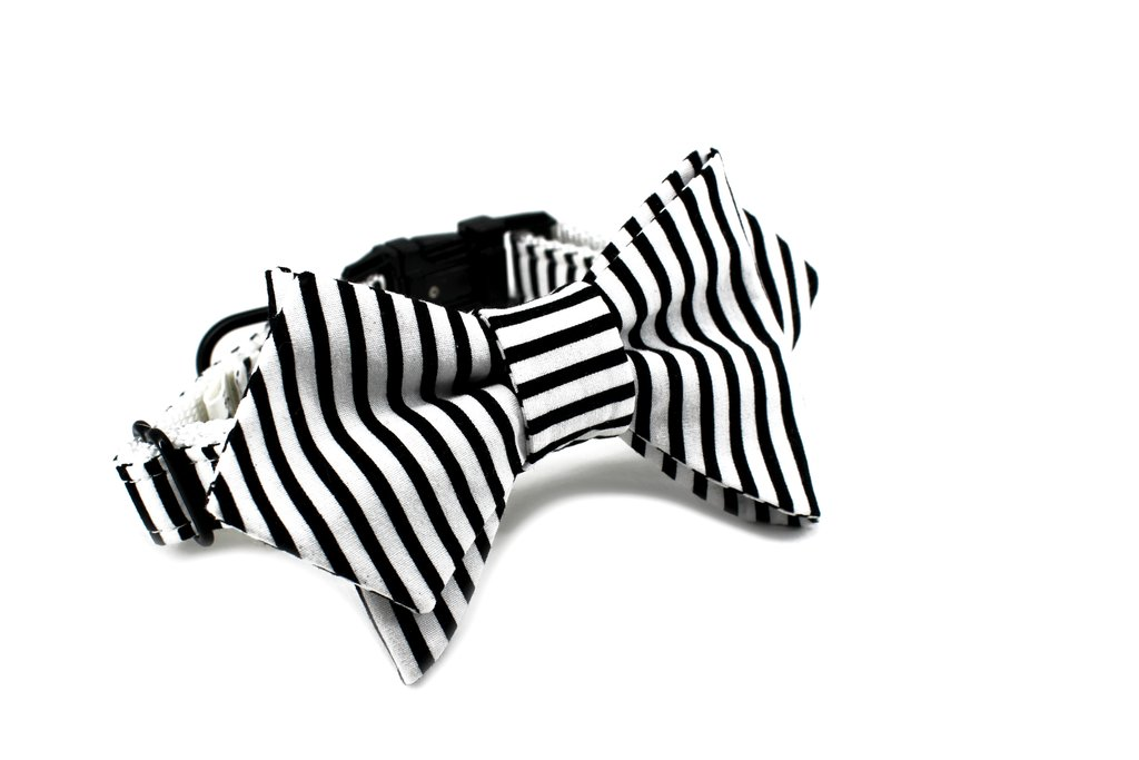 The Sloane bow tie from TRAX TIES