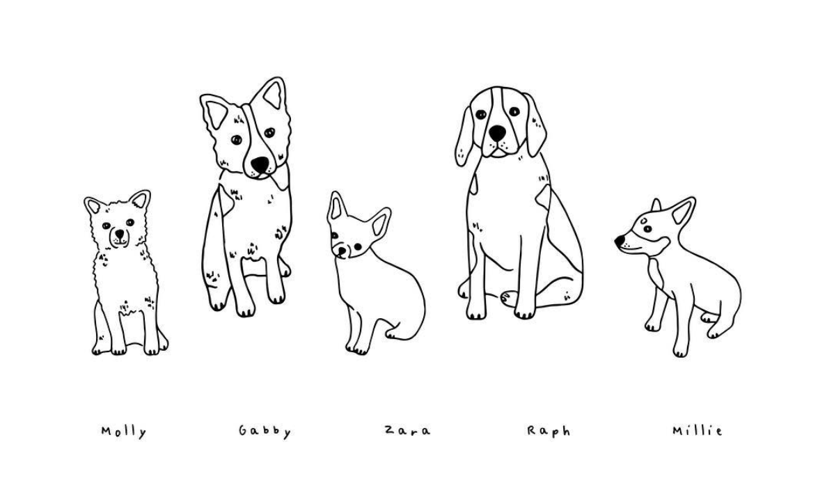 Florence and Ottie Illustration of dogs on The Dapple
