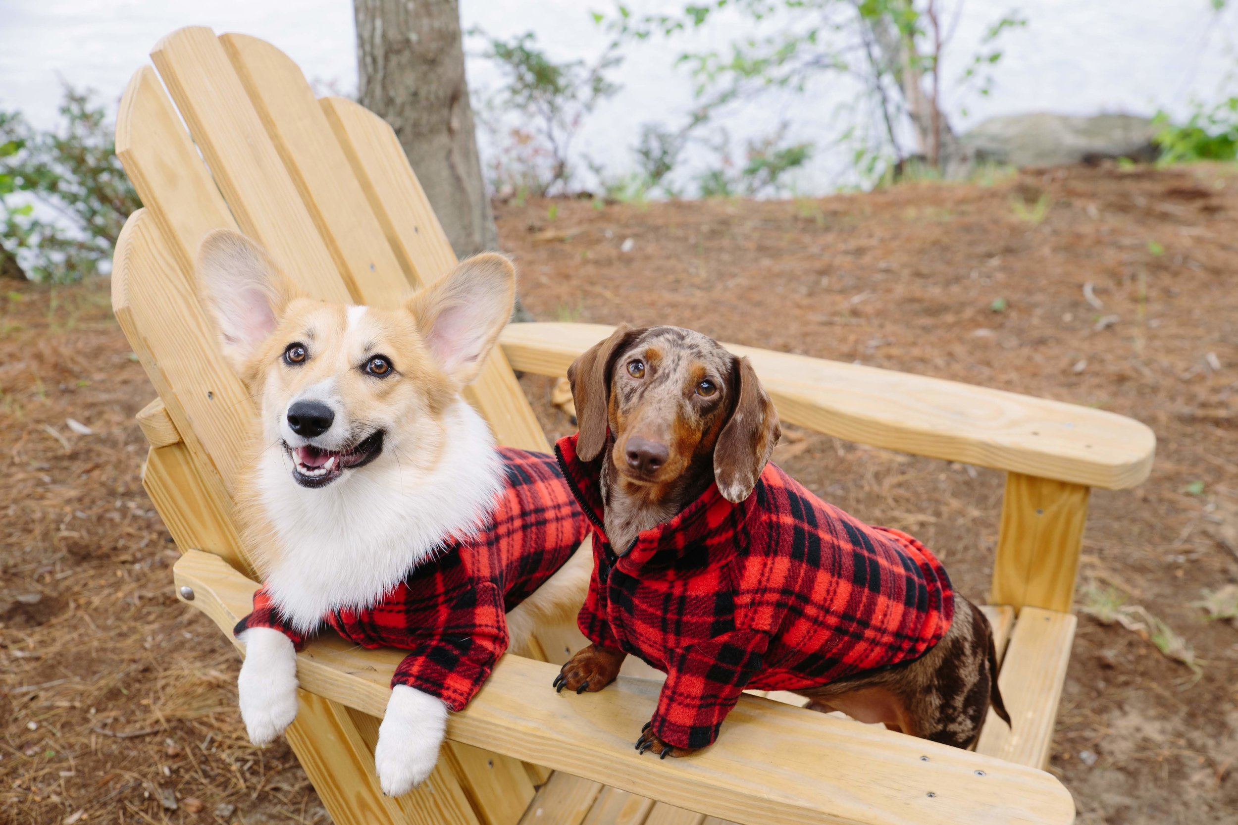 Modeling our Woof Out West fleeces