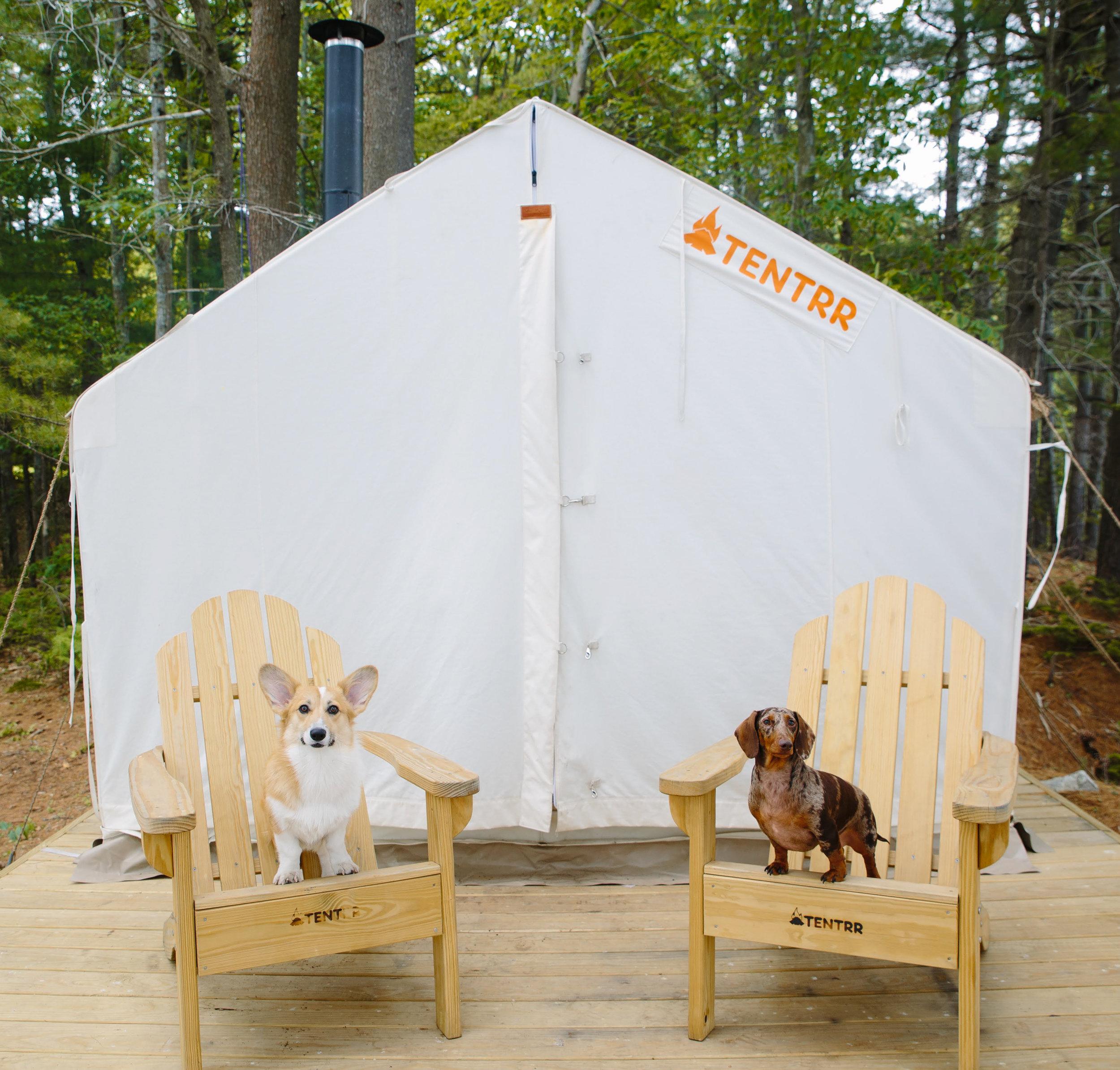 Our Tentrr tent