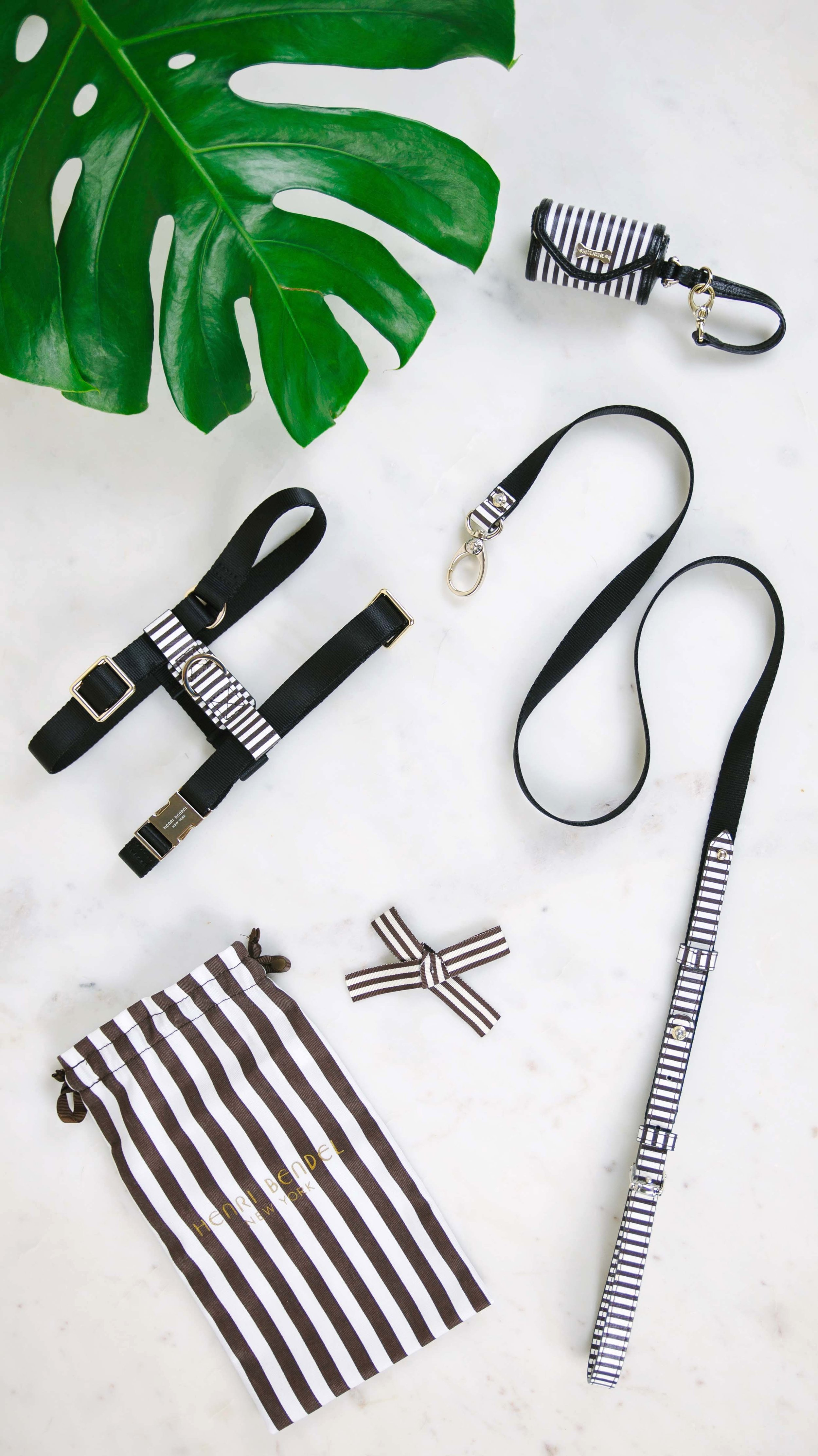 Dog Accessories from Henri Bendel on The Dapple, the lifestyle blog from The Ween and The Queen