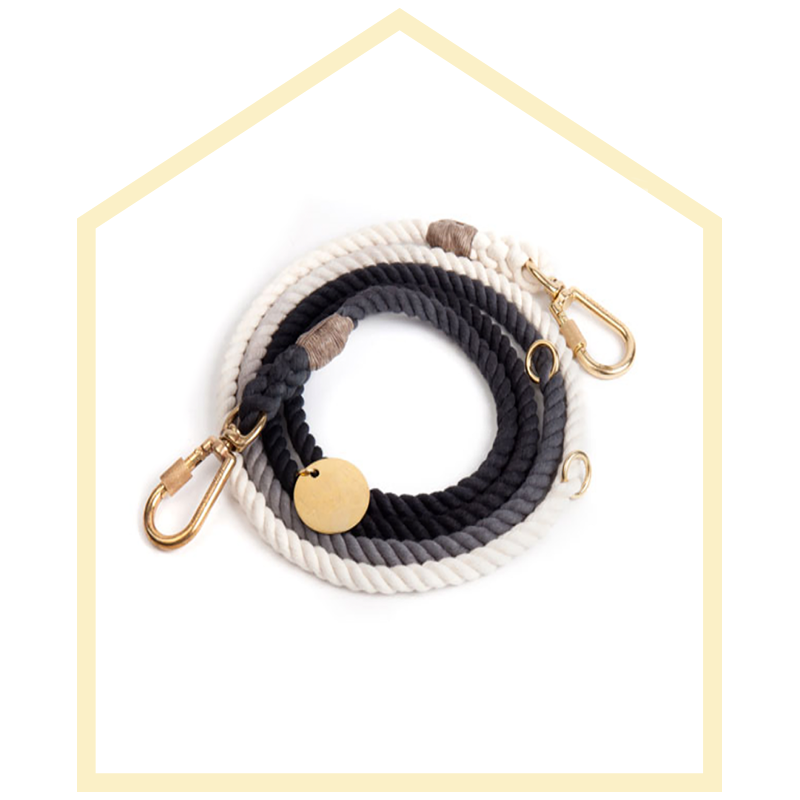 Found My Animal Black Cotton Ombre Dog Leash