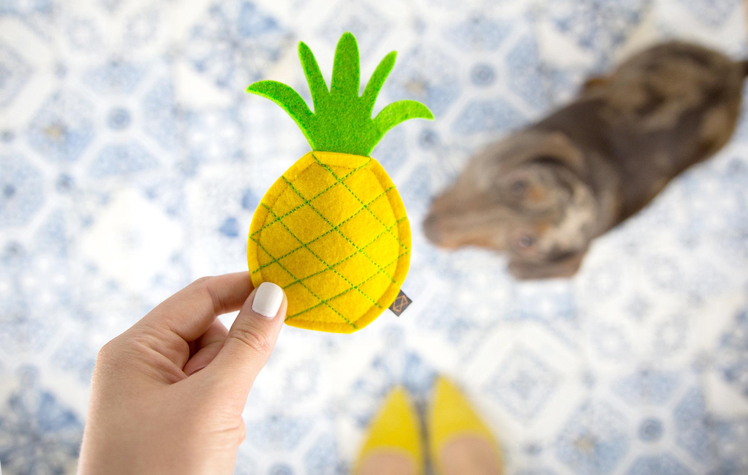 MODERNBEAST's  Puppy Pineapple Toy