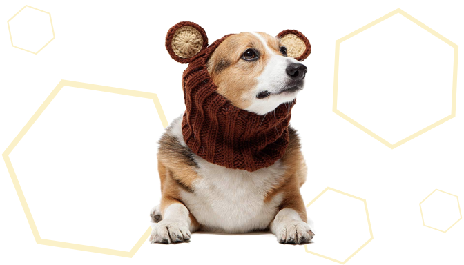 Zoo Snoods Bear Costume from Amazon