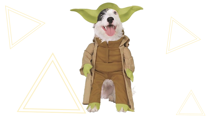 Yoda Dog Halloween Costume from Chewy