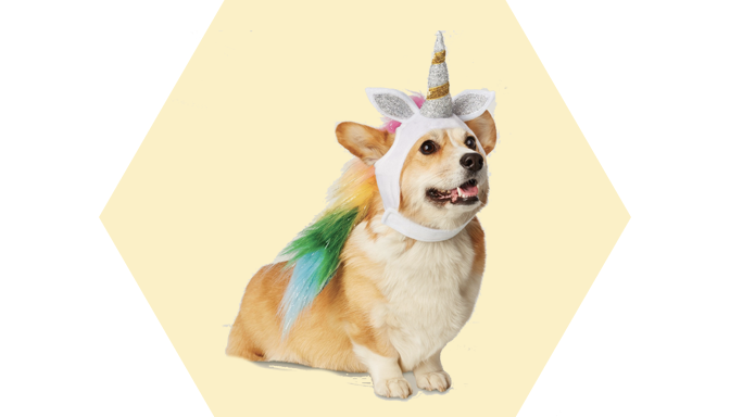 Unicorn Dog Halloween Costume from Target
