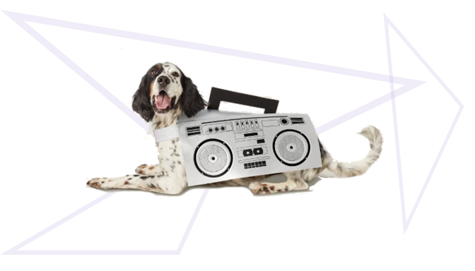 Boombox Dog Halloween Costume from Target