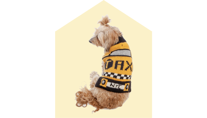 Peruvian Knits Taxi Dog Sweater at Dog & Co.