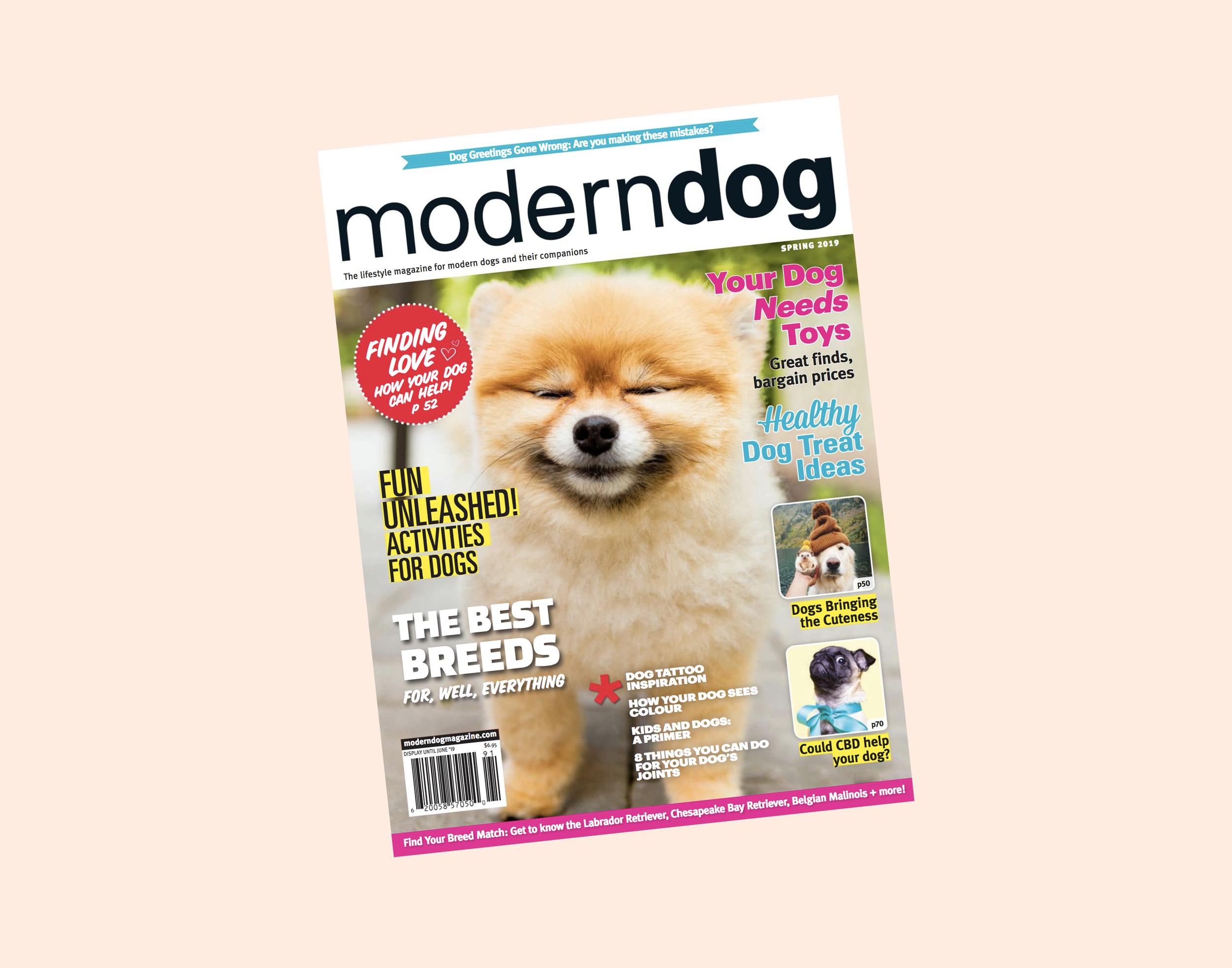 Image courtesy of Modern Dog Magazine