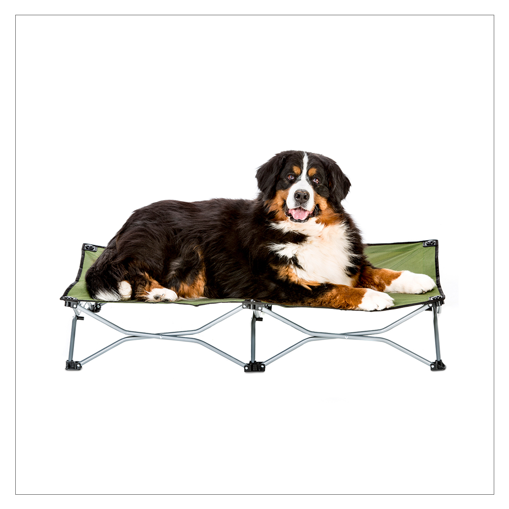 Carlson Pet Products Large Travel Bed for Dogs