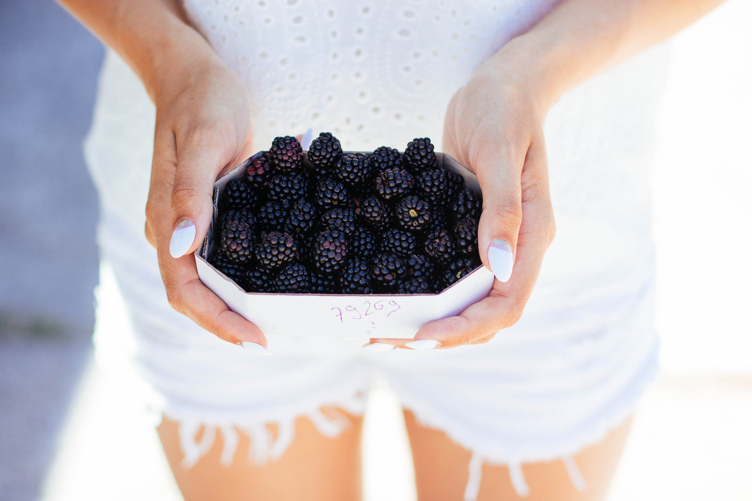 blackberries-blackberry-bowl-701774.jpg