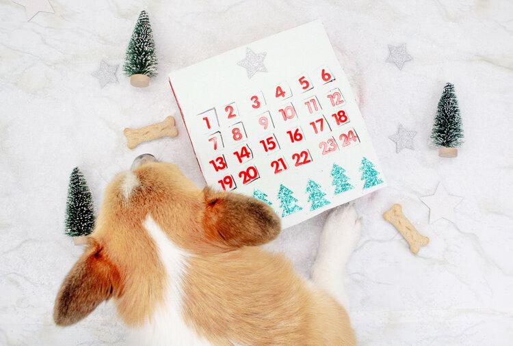 23 DIY adventskalenders voor je hond