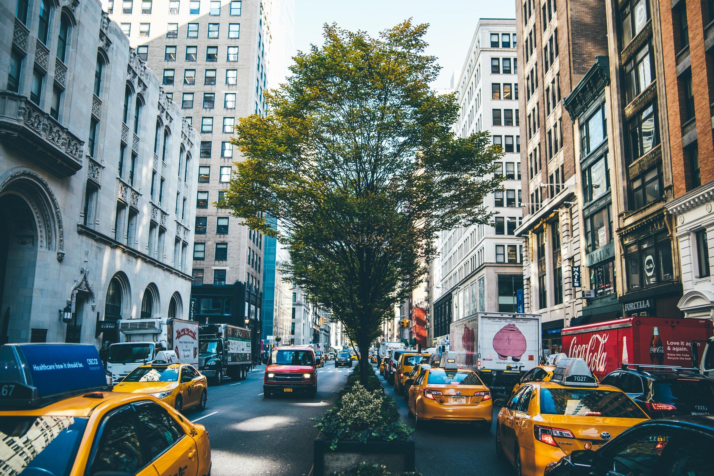 newyork-06758.jpg
