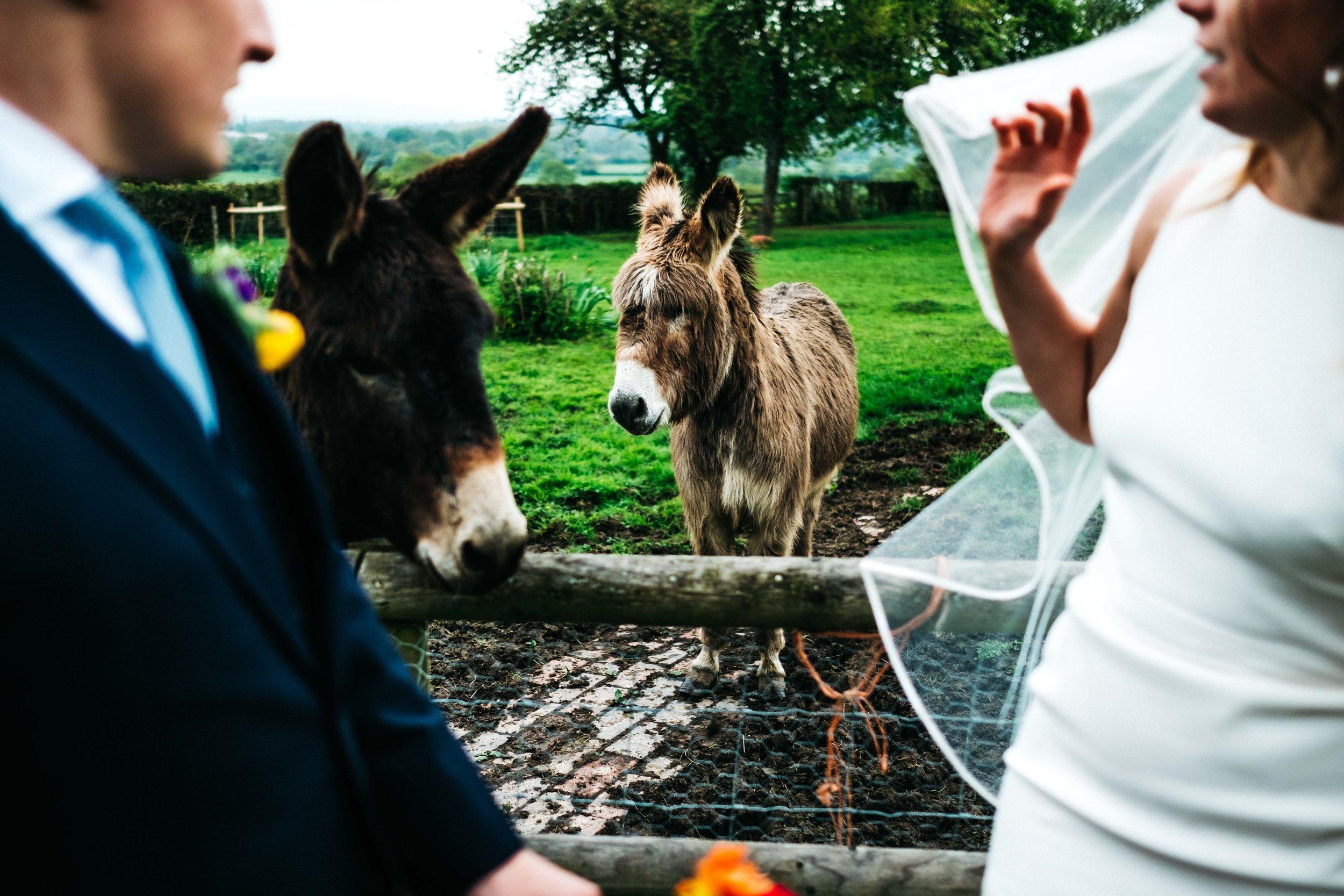kent-wedding-photographer-2599.jpg