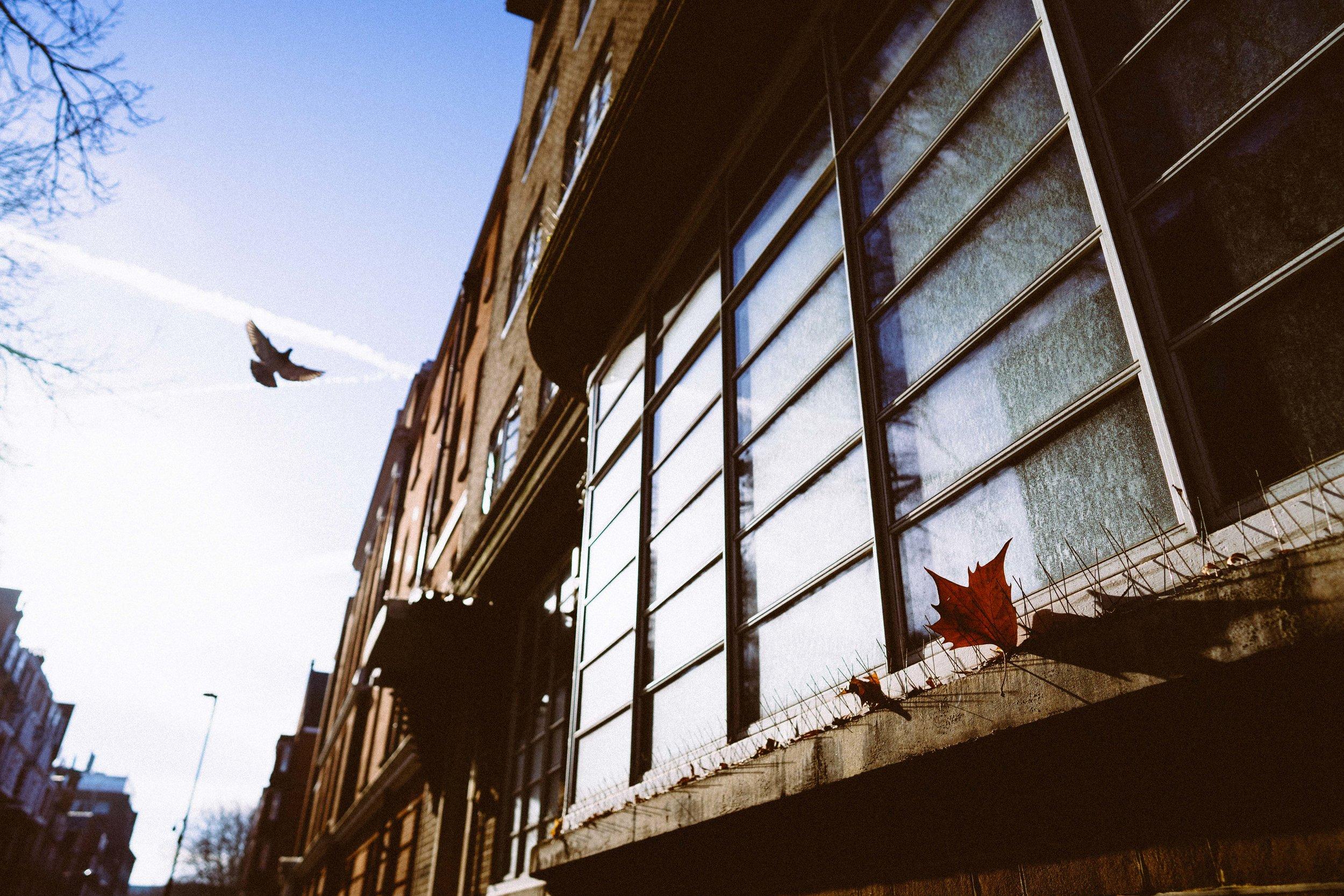 london-105559.jpg