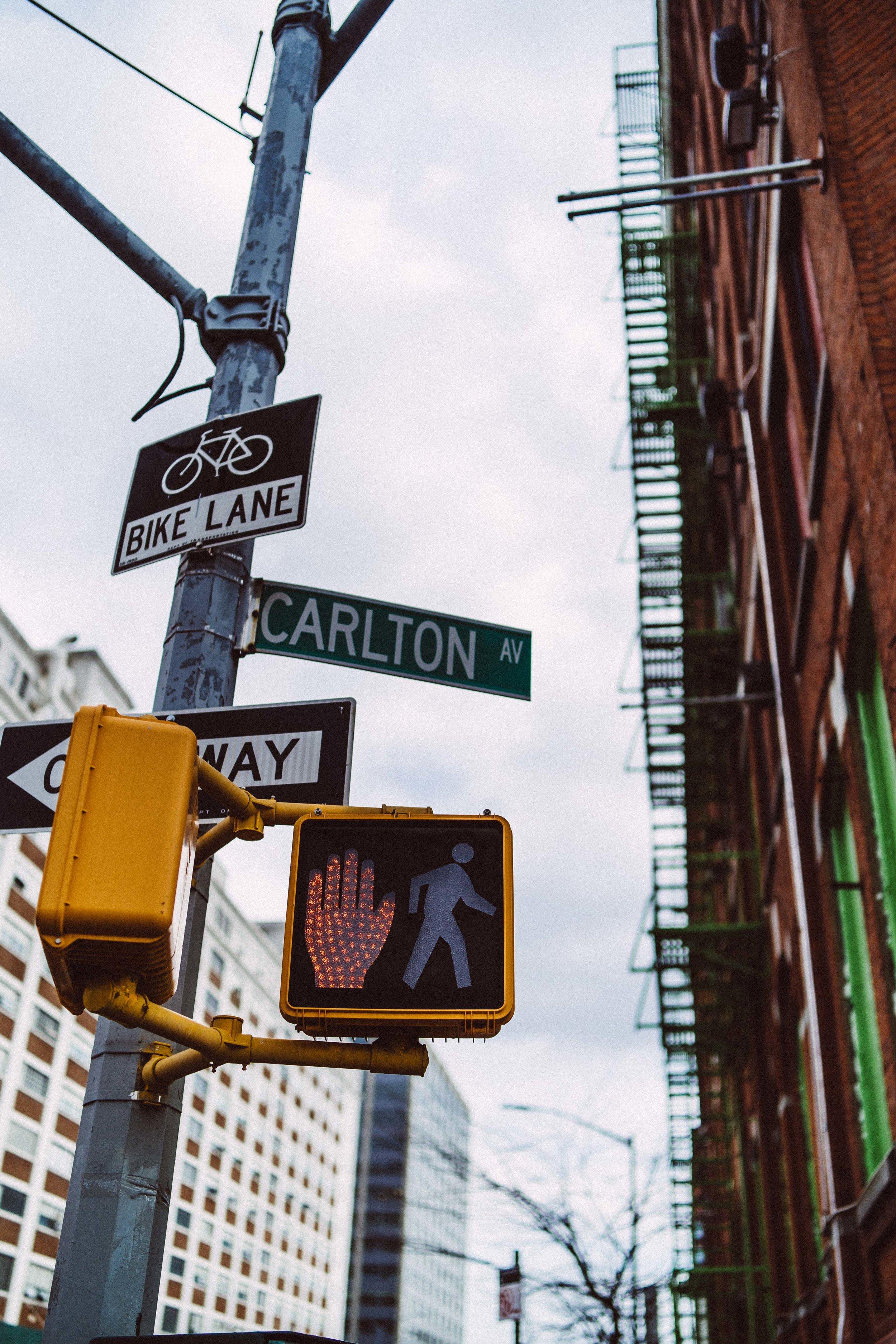 newyork-sony-101868.jpg