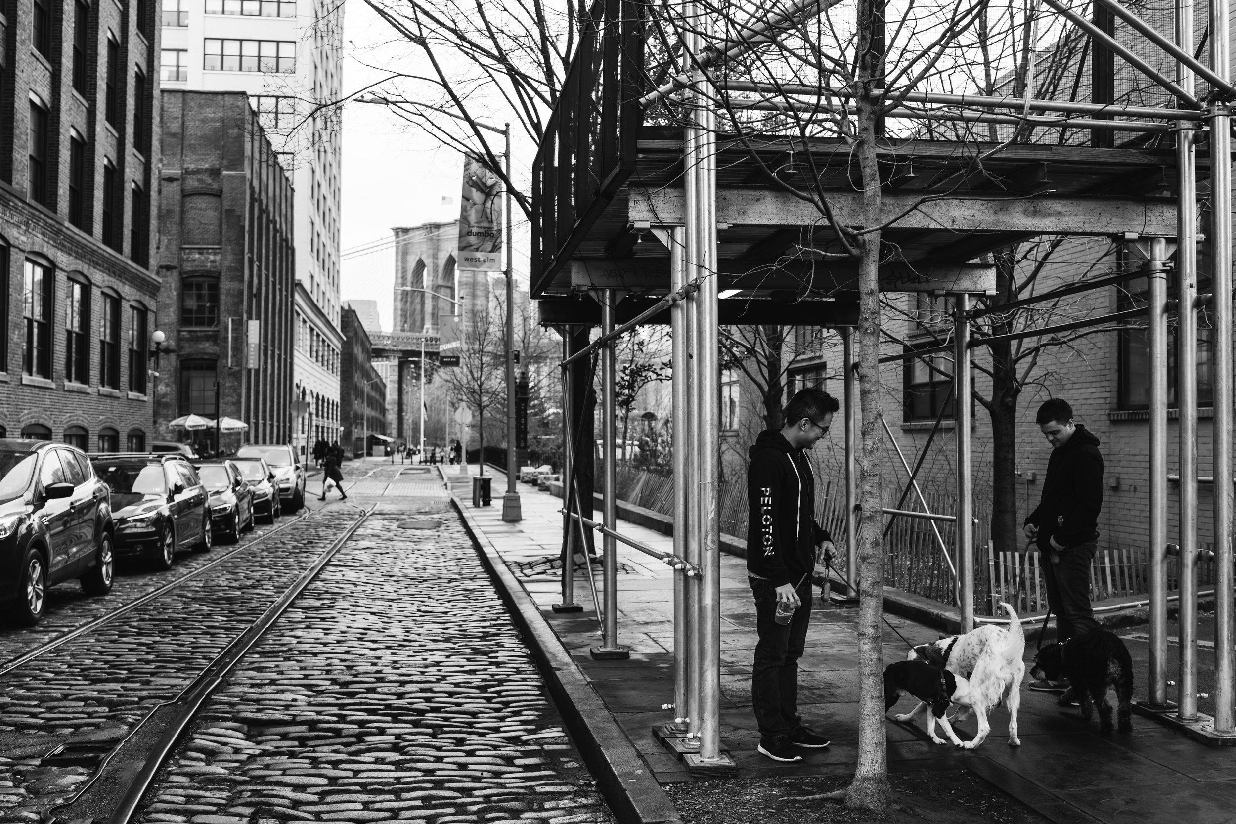 newyork-sony-101956.jpg