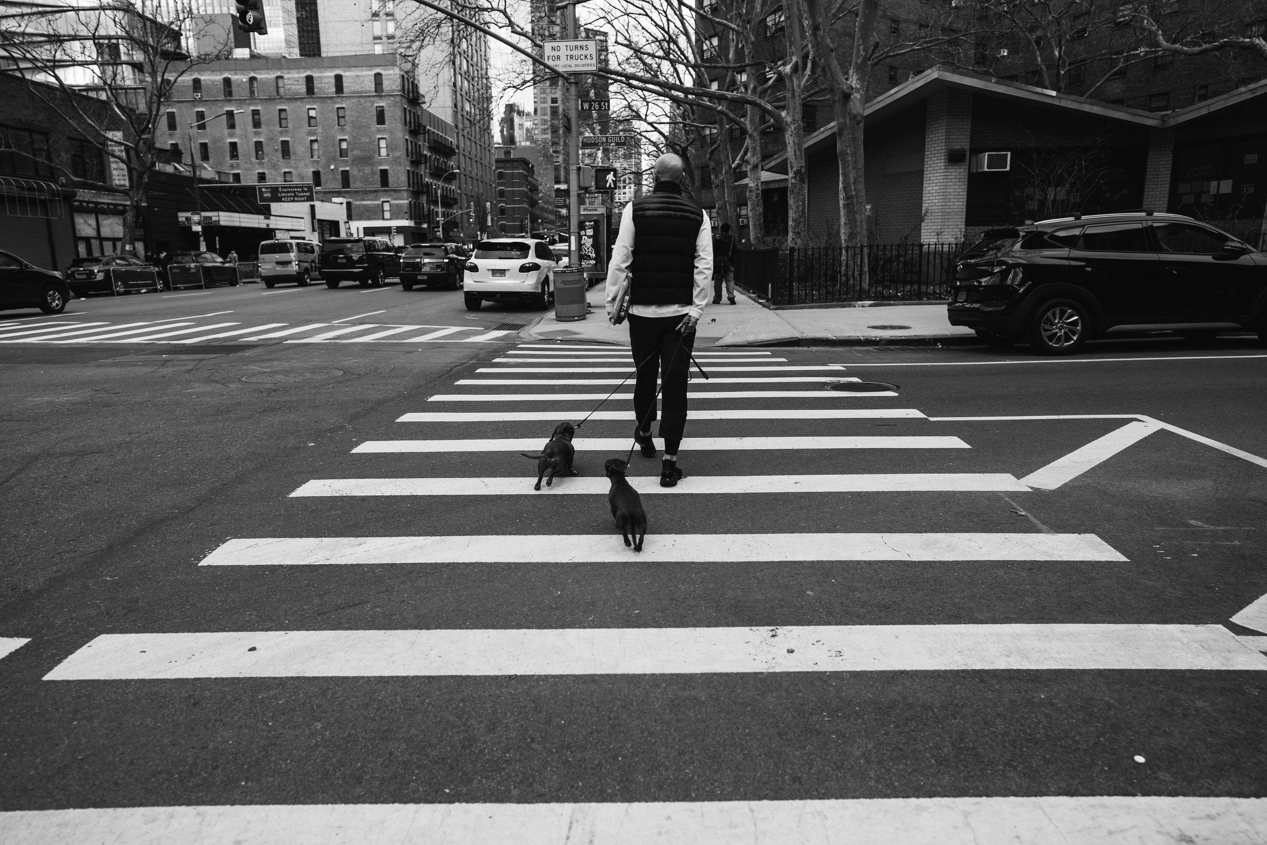 newyork-sony-103349.jpg
