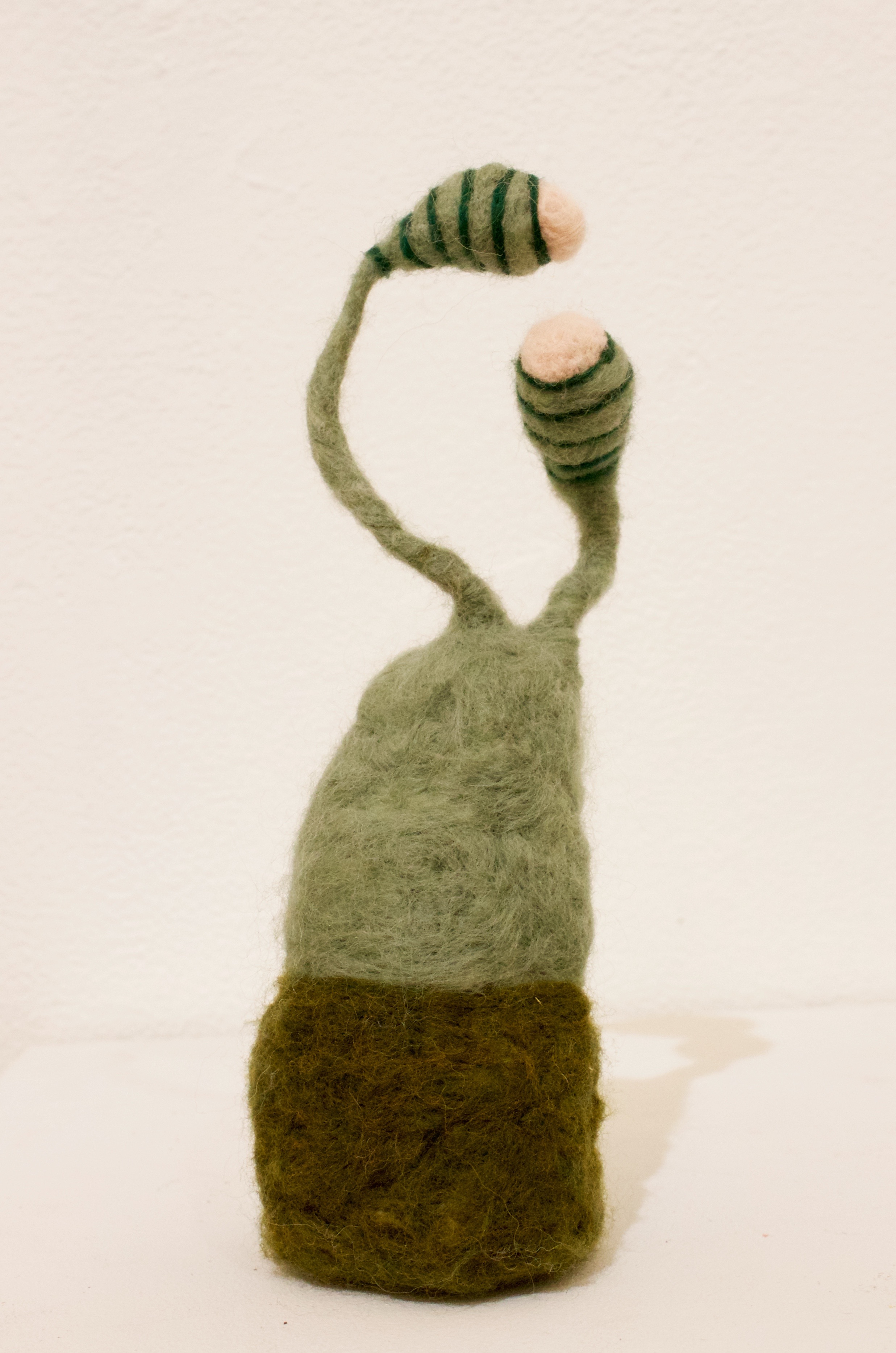 James (2019)  Wool roving, wire, polyfil