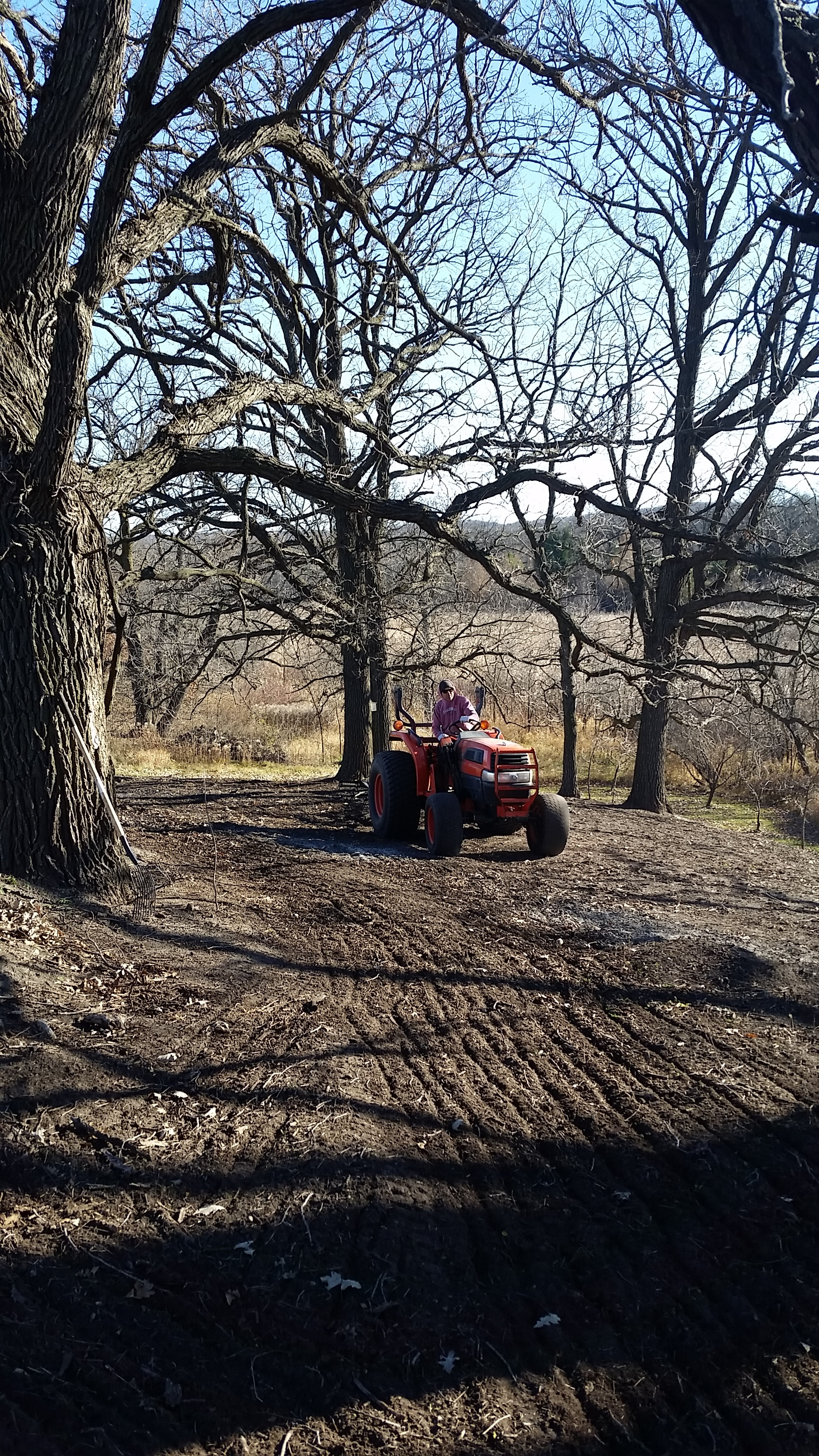 Preparing the soil for seeding in an Oak Savanna such as this takes time. We sprayed this plot the year before, burned it the following spring, sprayed two more times during the course of the summer, and burned the debris in the fall before seeding it.