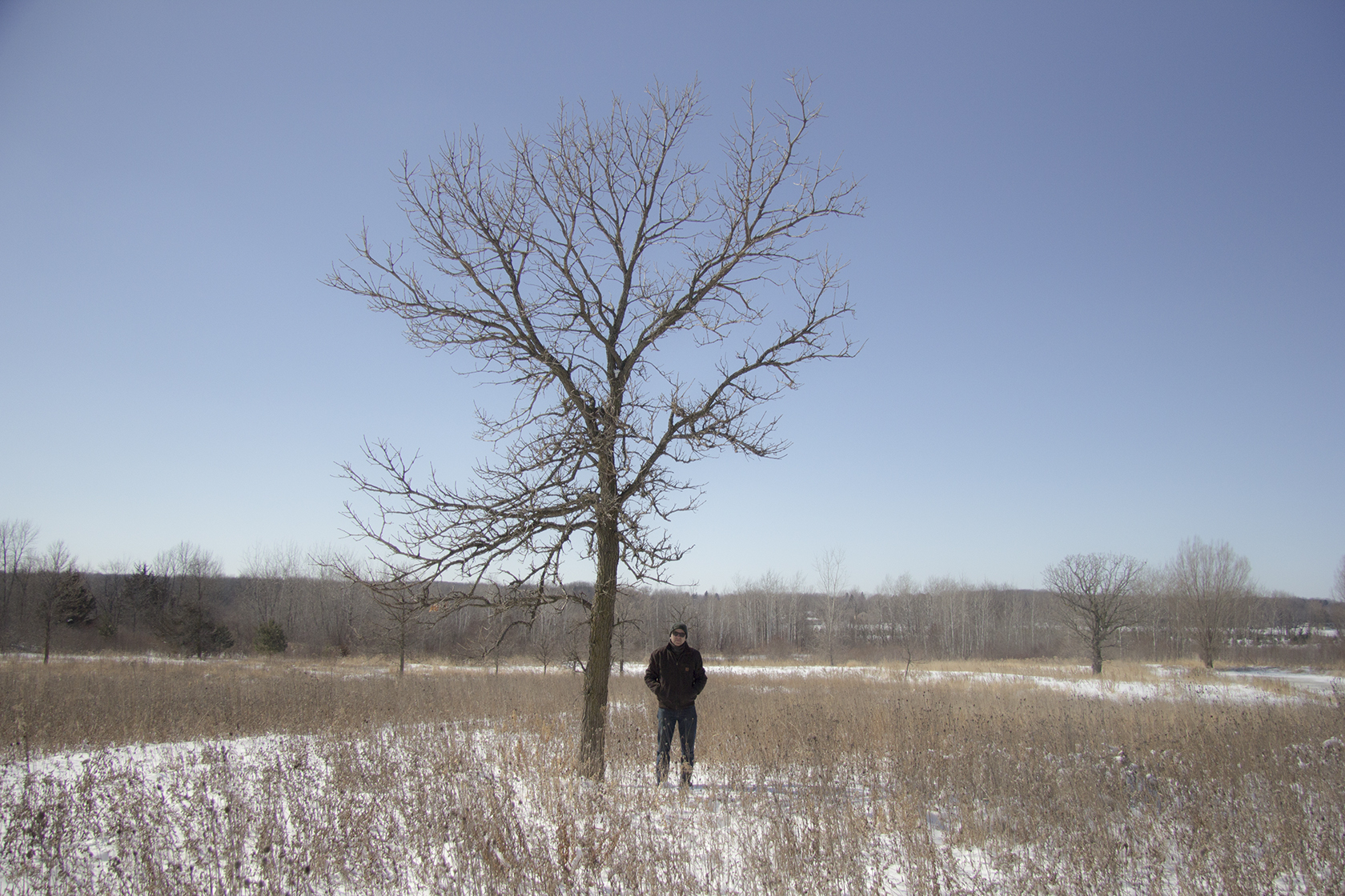 This Bur Oak was about my height when we built our house in 1987. That makes it at least 35 years old.