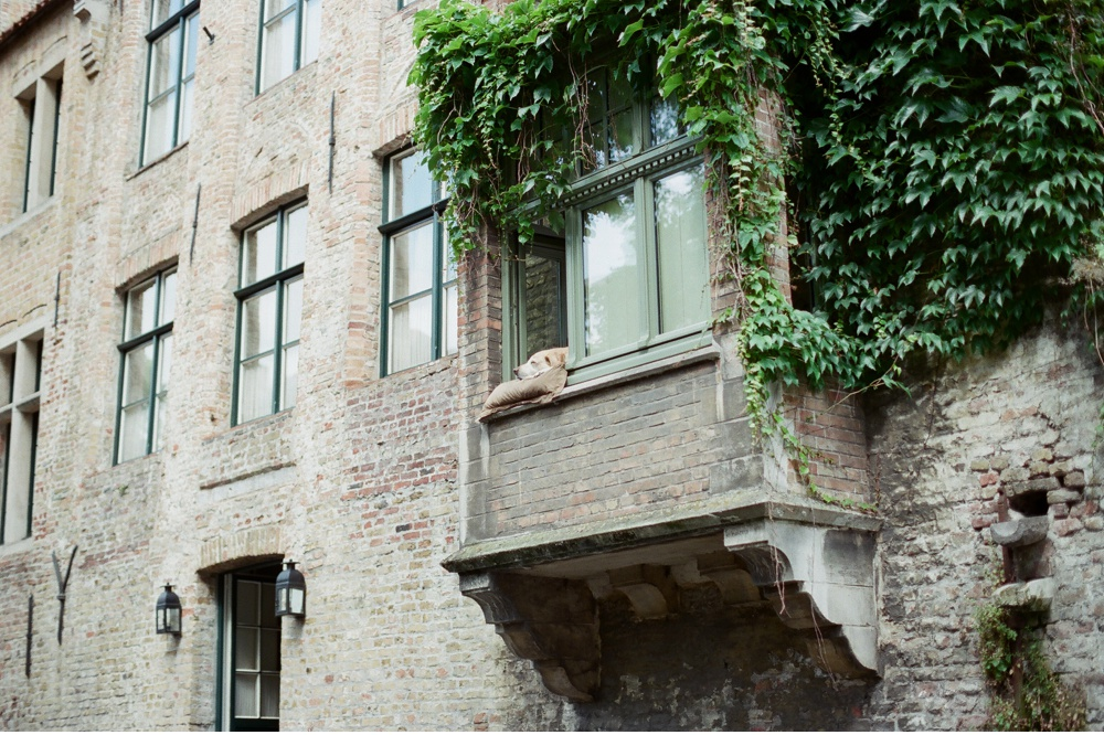 Brugge_Belgium_WeddingPhotographer©MadalinaSheldon_0012.jpg