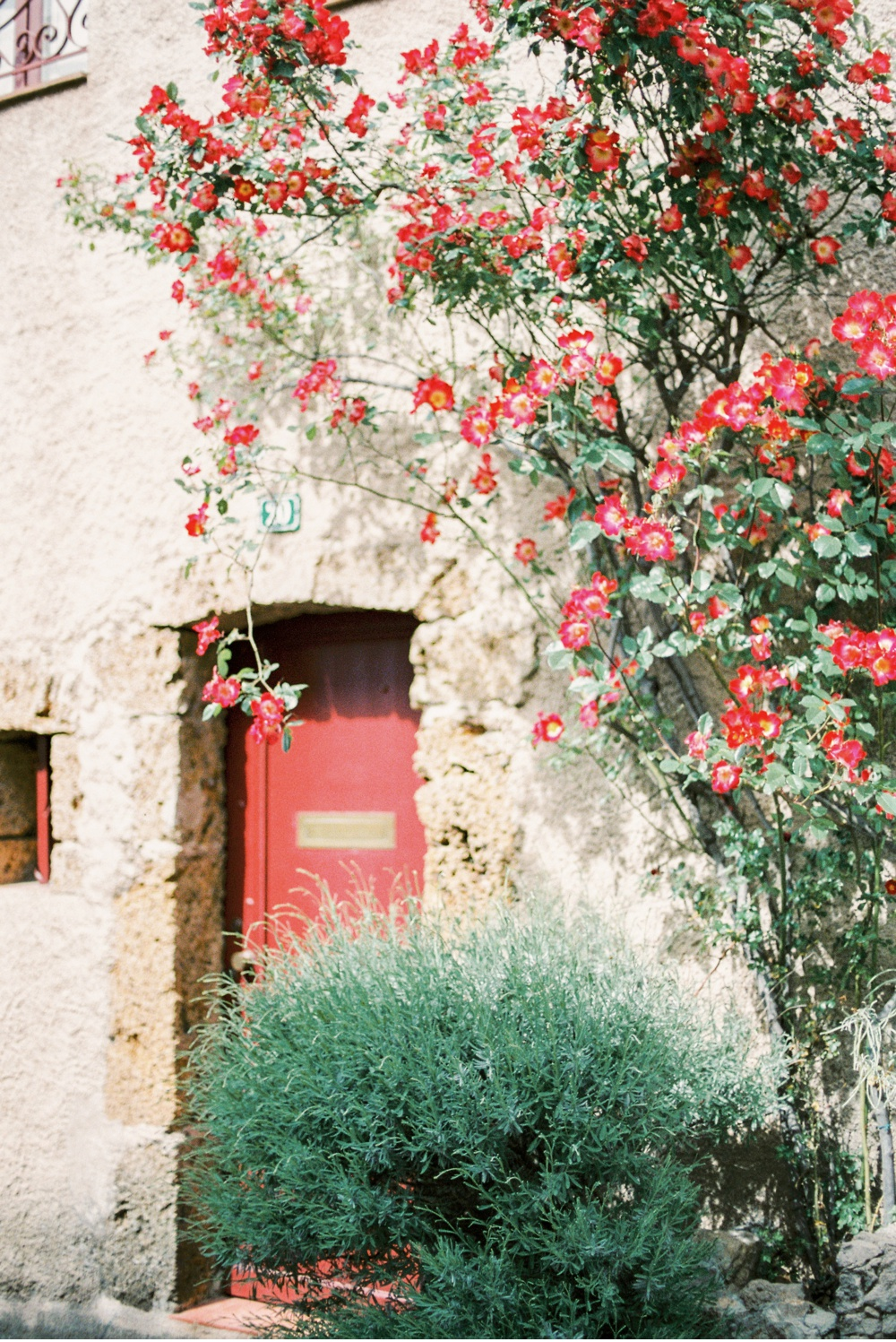 Provence_France_WeddingPhotographer©MadalinaSheldon_0007.jpg