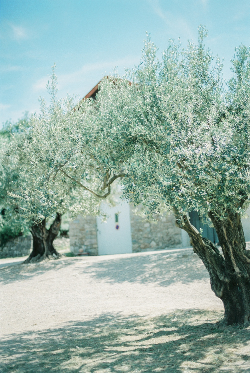 Provence_France_WeddingPhotographer©MadalinaSheldon_0068.jpg