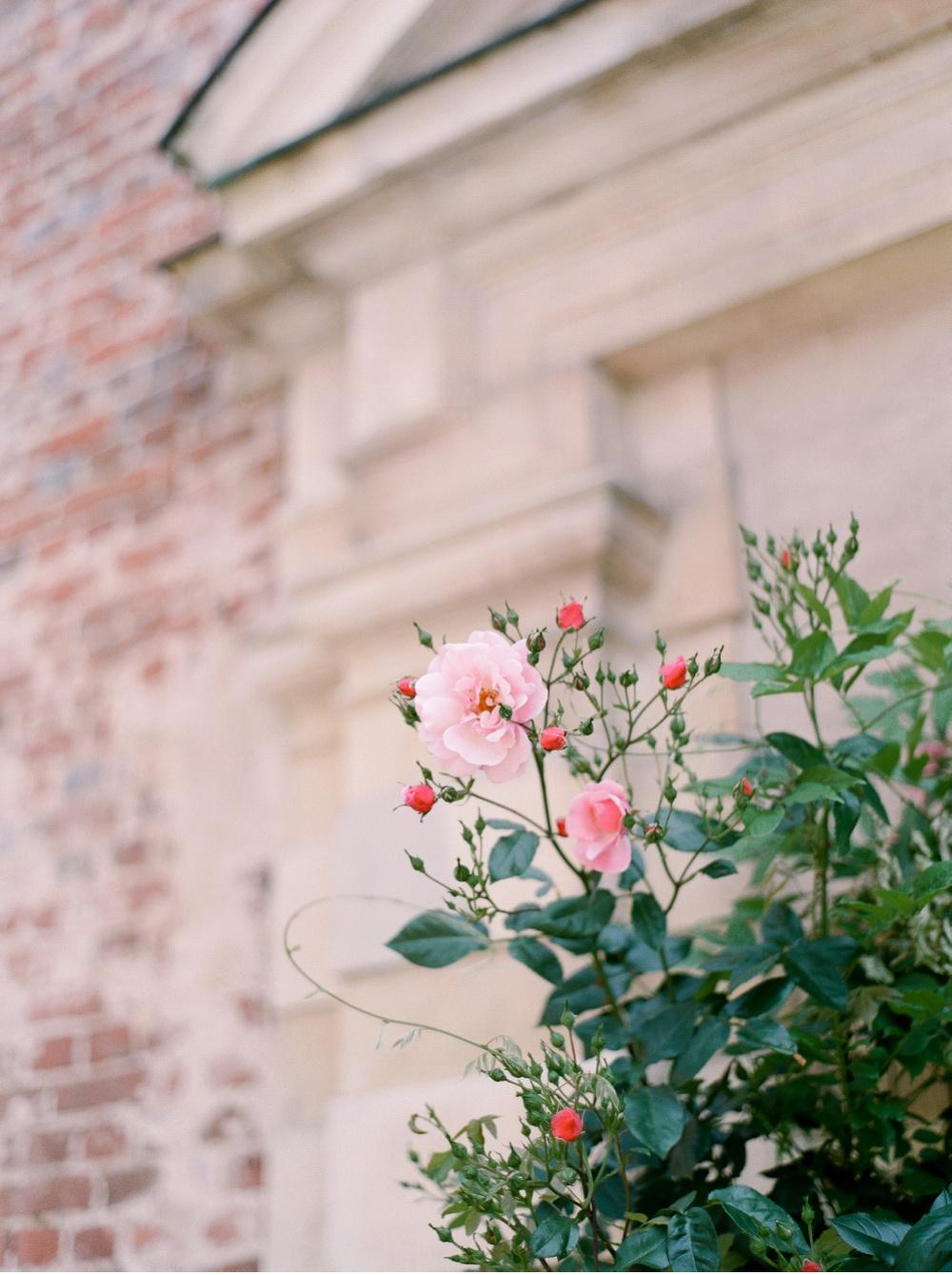 Wedding_Photographer_Tuscany©MadalinaSheldon_0012.jpg