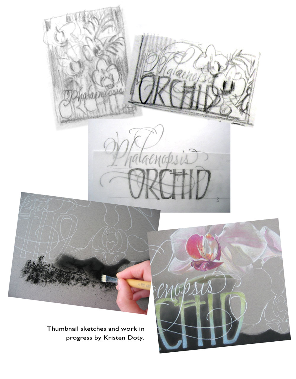 18pro04-orchid-work-in-progress.jpg