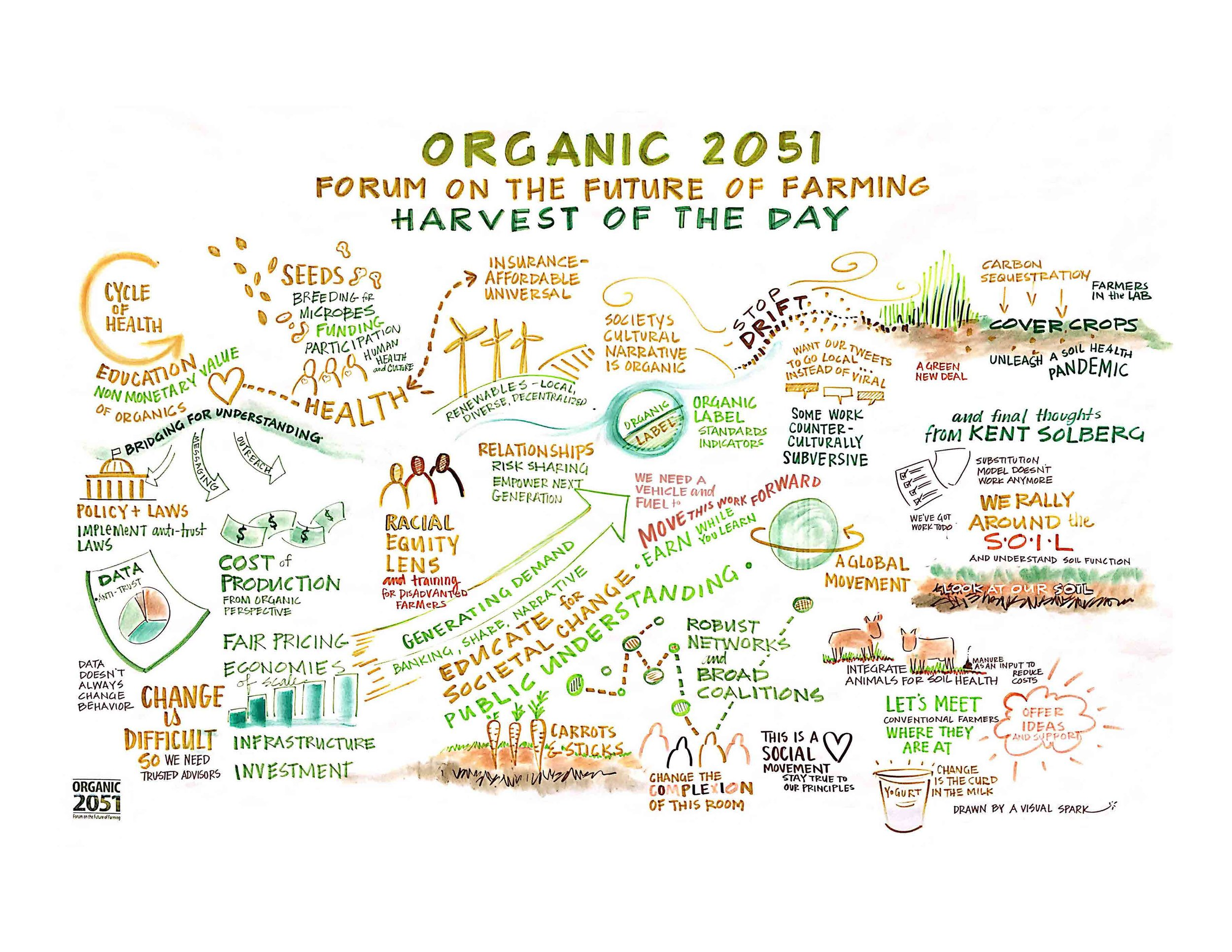 Harvest Organic 2051, graphic recording  by A Visual Spark