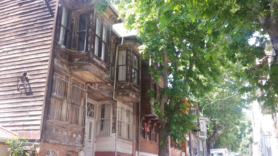 Houses from the Silihdar Bahçe neighborhood that are covered by a row of willow trees.