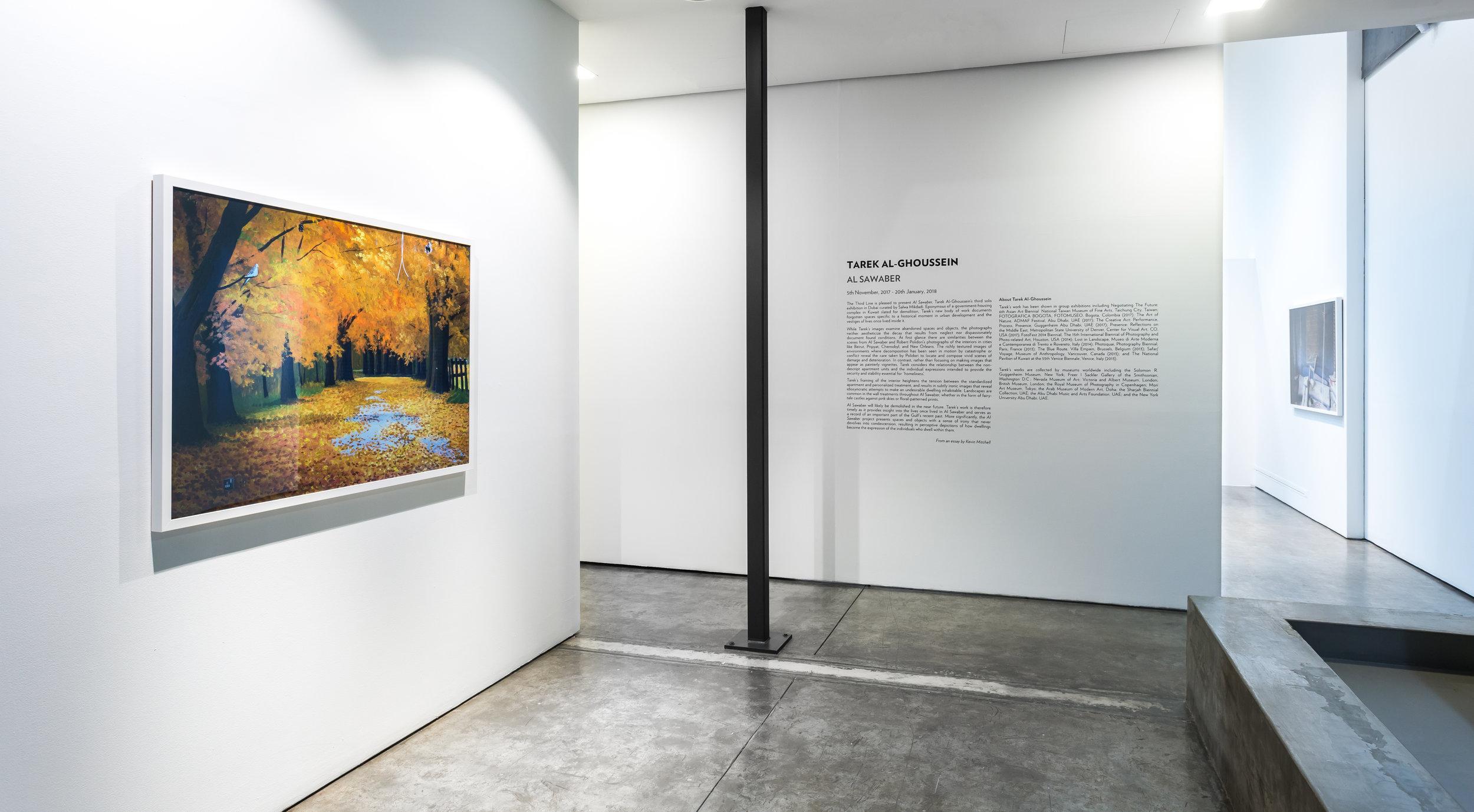 Tarek Al-Ghoussein_Al Sawaber_2017_The Third Line_Installation view_41.jpg
