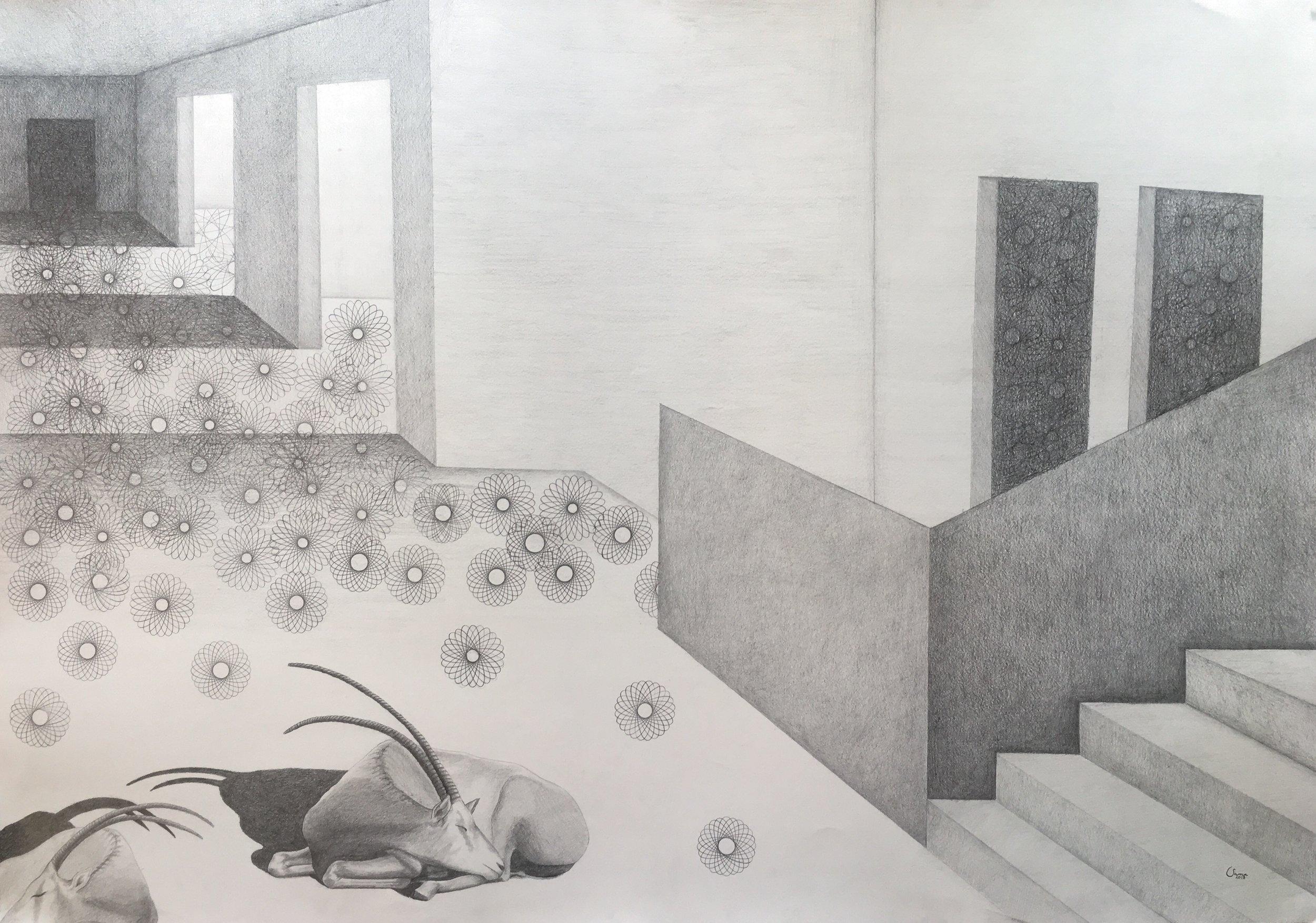 Maia Maha, pencil on paper, 70 x 100 cm, 2018