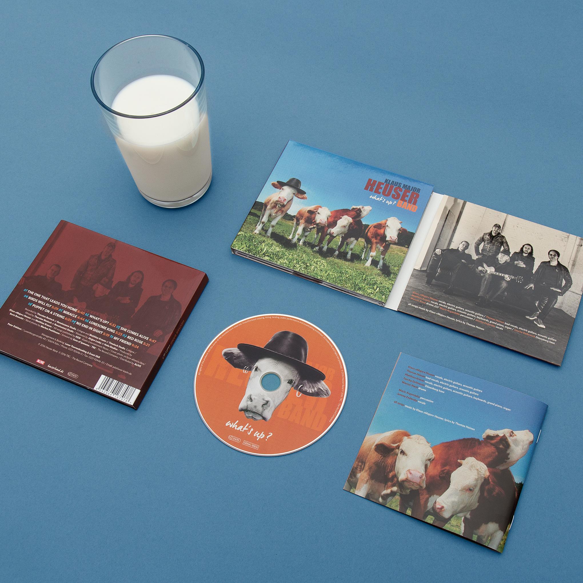 """Artwork mit Kuh mit Hut für das Album """"What´s up?"""" von der Klaus Major Heuser Band. Gestaltung von der kölner Grafik Agentur sons of ipanema."""