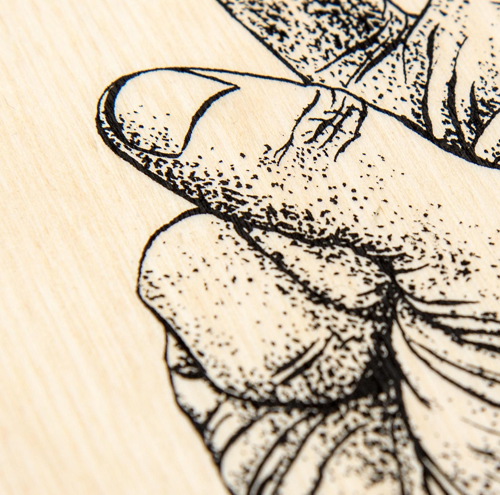 Illustration (Siebdruck auf Holz) – für OK KID von den sons of ipanema