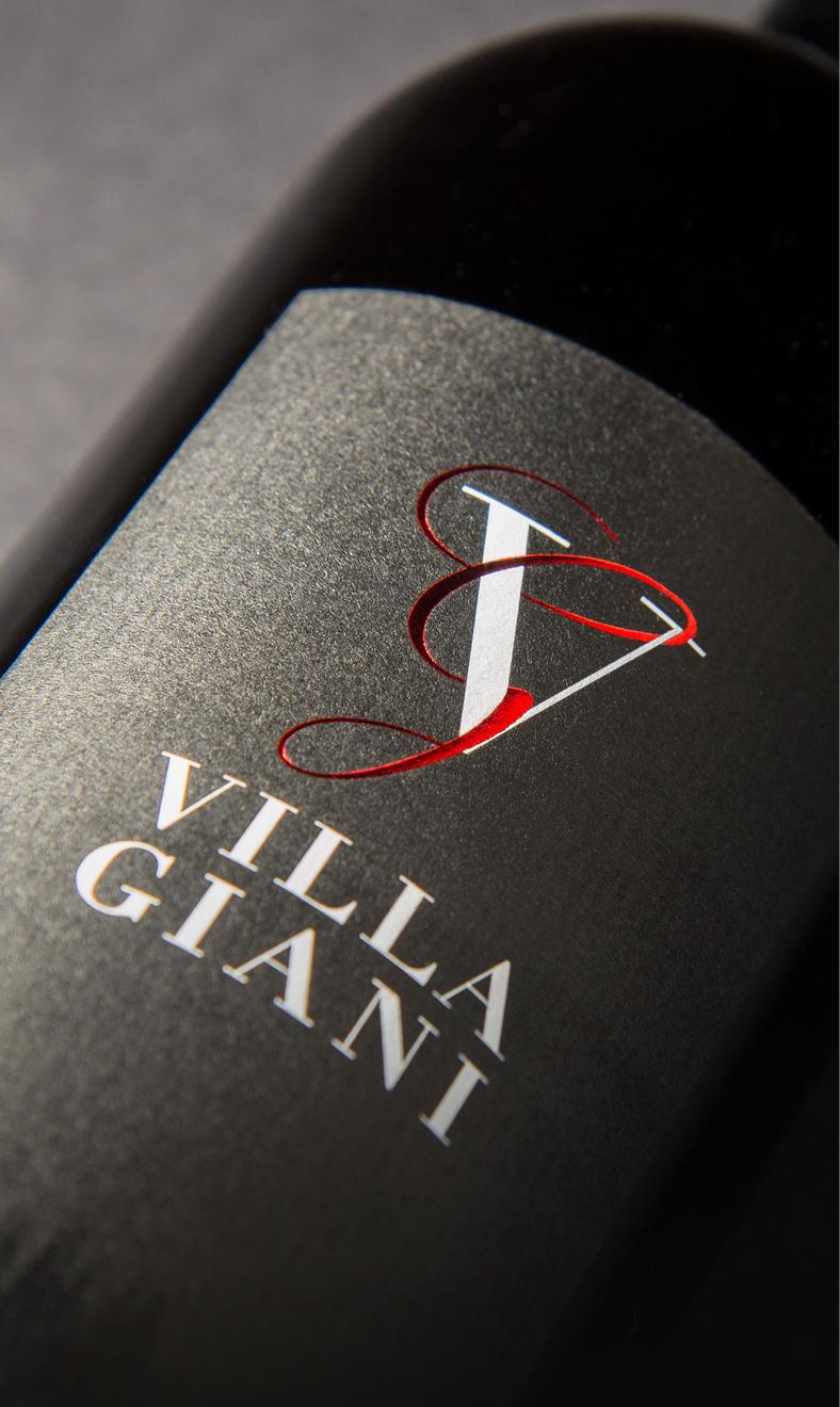 Logogestaltung für Vill Giani, eine Villa in der italienischen Toskana, die auch eigene Produkte wie Rotwein, Honig und Olivenöl herstellt