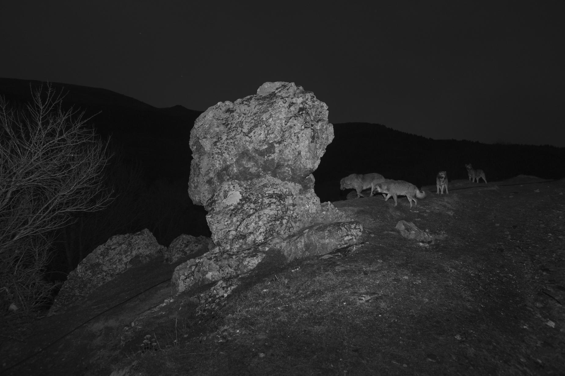 Foto geprint op Fine Art Pearl Baryta (Satin) 285gsm Papier - 40 x 60 cm of 60 x 90 cm of 90 x 135 cm