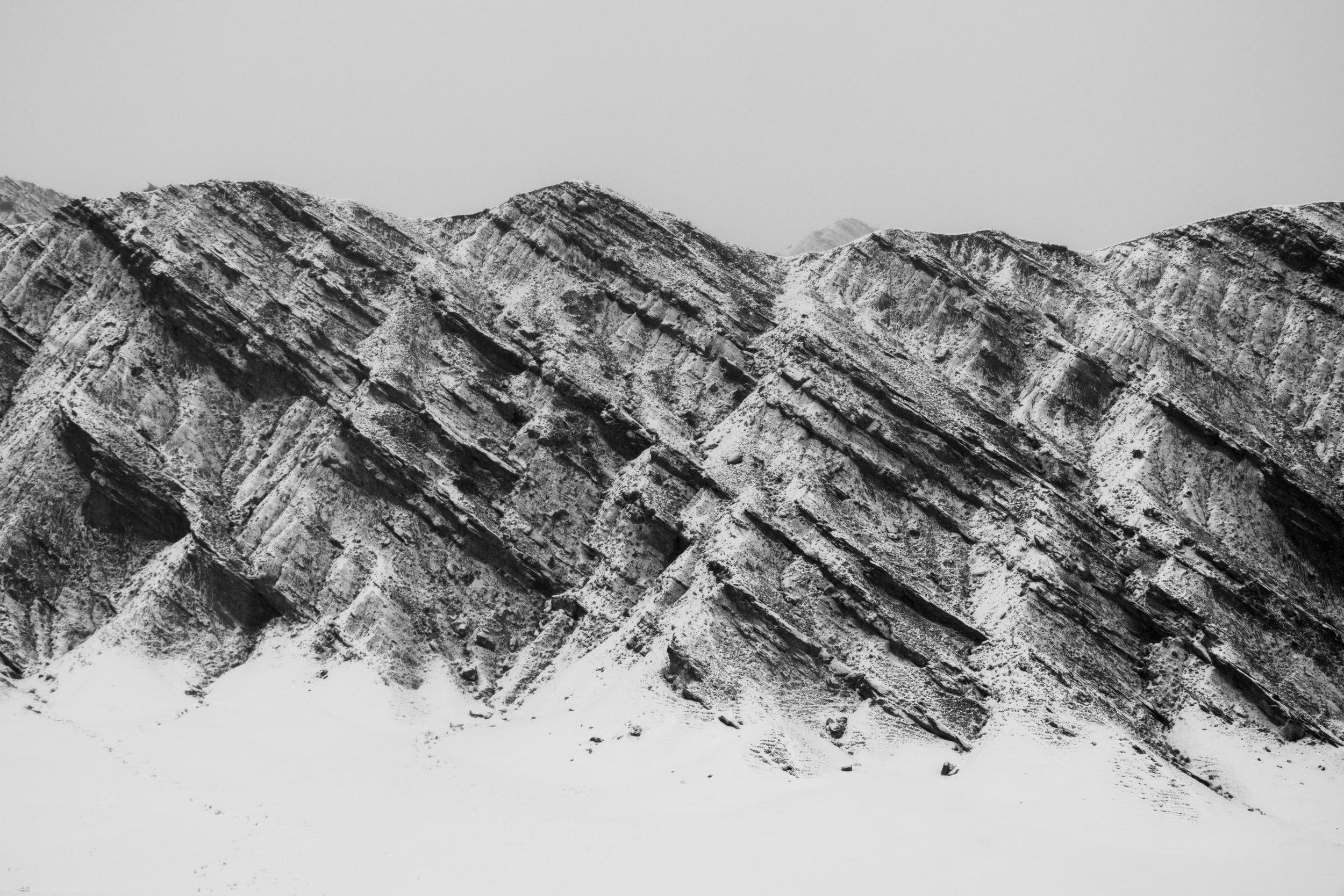 Horse Head #15 - Foto geprint op Fine Art Pearl Baryta (Satin) 285gsm Papier - 40 x 60 cm - 60 x 90 cm - 90 x 135 cm - 135 x 195 cm